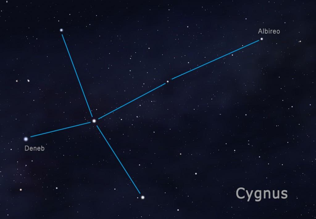 cygnus FIN