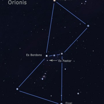 orion FIN